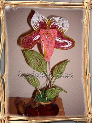 """Орхидея  """"Венерин башмачок """", бисер."""